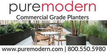 Banner - puremodern